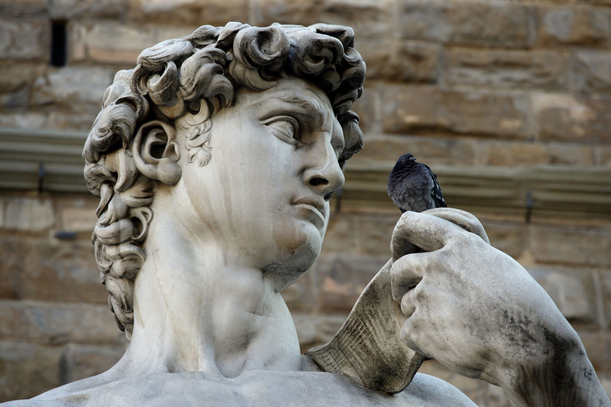 Ο Δαβίδ του Μιχαήλ Αγγέλου, Γκαλερία ντελ' Ακαντέμια, Φλωρεντία, Ιταλία, Ευρώπη
