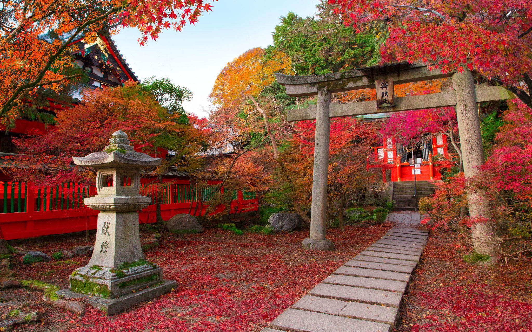 Image result for κιοτο ιαπωνια